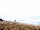2月21日、クリフス、レフト。南。(向こうの方に、マキちゃんとアレンが歩ってる!)