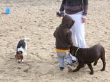 アレンくんは犬攻撃に遭い、この後ペロンされるも、すぐに水で口ゆすいでた!!