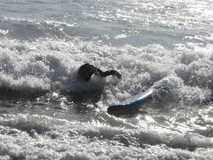 本日のワイプアウト〜・・・この後、砂浜に耳から波に叩き付けられて〜・・・たぁ〜〜いへん!砂が耳の中に〜・・・そんな、ばかなぁ〜・・・・・