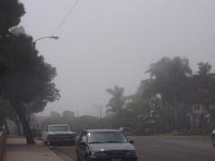 デラウェアの坂の上から見たら、下に霧が溜まってる〜!!
