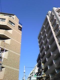 Image1189.jpg