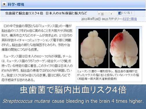 血管修復阻害.jpg