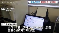 成田帰国男児新型コロナ感染(チューリップ)