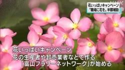 花いっぱいキャンペーン(NHK)