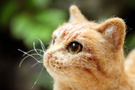 はねつきりんご羊毛フェルト茶トラ猫