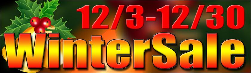 2011_wintersale_banner.jpg