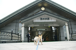 フレンチブルドッグと行く軽井沢