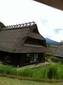 日本の原風景とフレンチブルドッグ