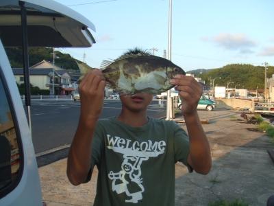 亮の釣った魚