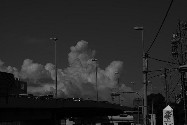 photo by masa
