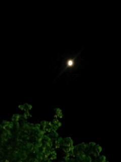 小満の夜空