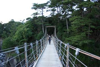 橋立吊橋!