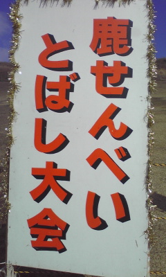 100123_1304~01.jpg
