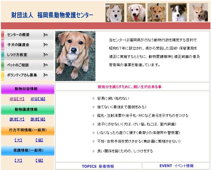 福岡県の収容犬猫をhpで公開 いのちの大切さを伝えたい