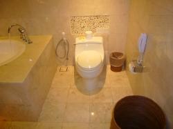 マハパラ トイレ