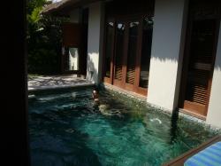 マハパラ ヴィラ屋外プールで泳ぐ