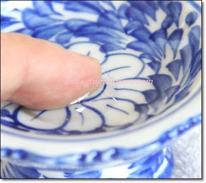 400テルビス皿と指.JPG
