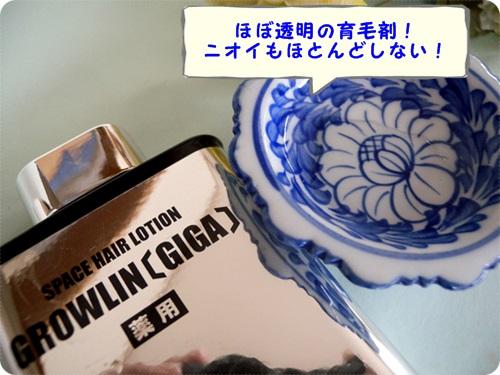 500グローリンギガ皿に文字.JPG