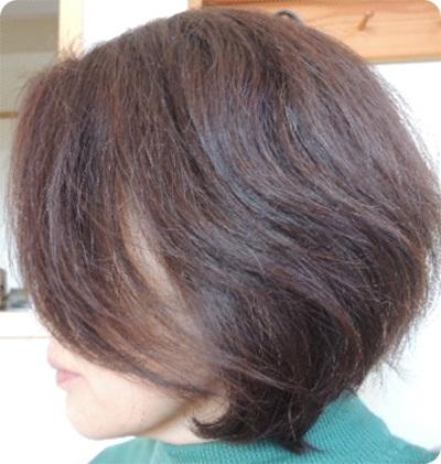 400髪横から - コピー.JPG