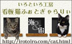 スペインタイルショップ・いろといろ工房/看板猫写真