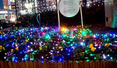 花壇イルミネーション