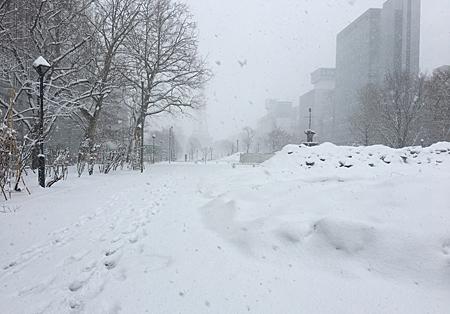 大通公園の雪景色