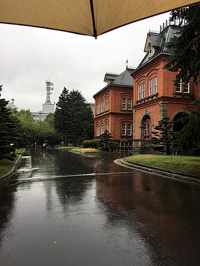 傘と道庁赤レンガ庁舎