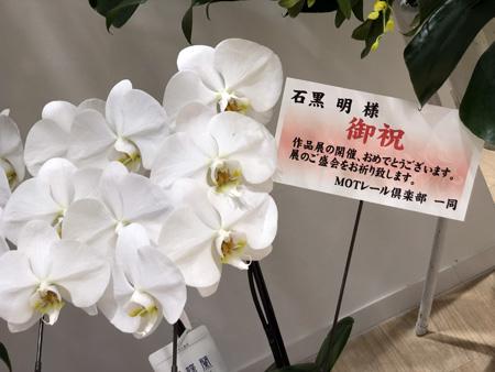 MOTレール倶楽部からのお花