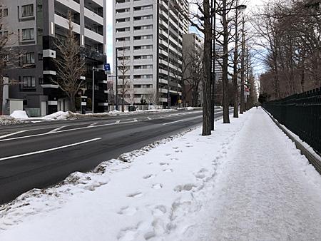 白い歩道と乾いている車道
