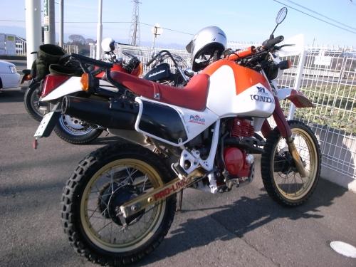 R1012196.JPG