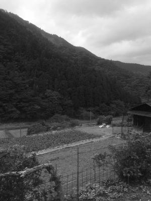 花園の山と畑