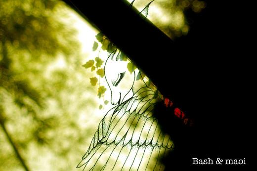OU-Web_Flash画像