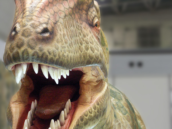 Walking Dinosaurs Allosaurus