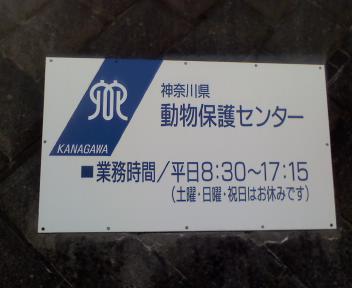 L8520061.JPG