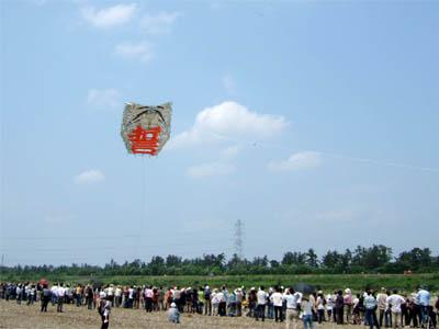 八日市大凧 飛翔