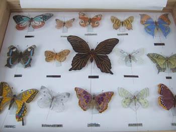 蝶のミニ凧1