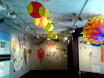 中国の凧の展示コーナー