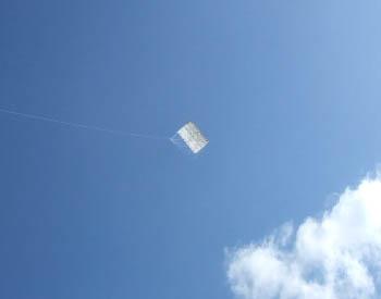 強風の中 1畳半の凧を