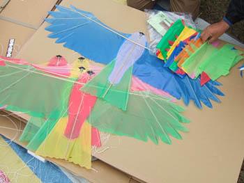 カラフル鳥凧