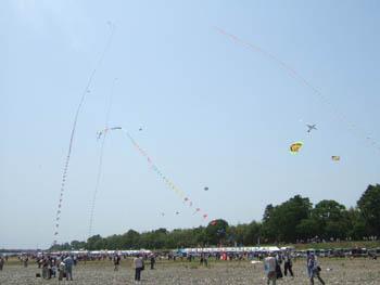 連凧のオンパレード
