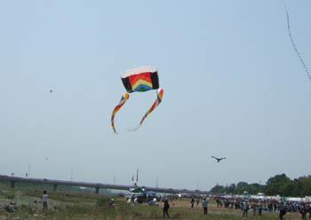 カラフルな布団凧