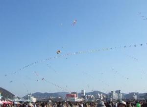 連凧がいっぱい
