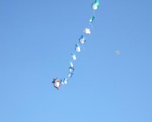 トトロの連凧