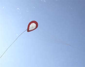 鳴門のわんわん凧