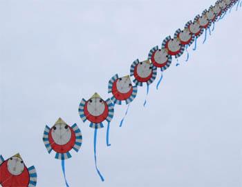 ふくらすずめの連凧