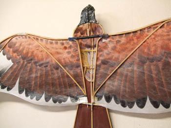 盤鷹の骨組み