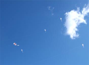 凧作り凧揚げ2011