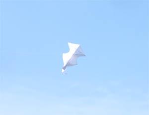 六角凧の変形の仕方