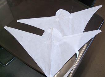 前進翼の凧