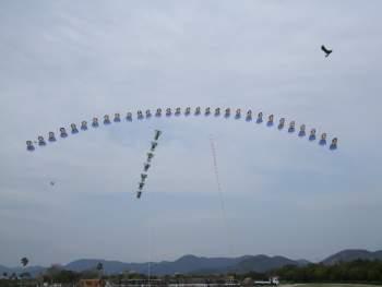 アーチカイトと縦連凧